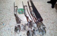 دستگیری متخلفین شکار  16 قطعه کبک  به همراه 3 قبضه سلاح در سیاهکل