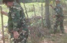 رفع تصرف بیش از ۲۲ هزار مترمربع از زمینهای ملی در لاکان رشت